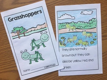 Insect Easy Readers for Little Learners