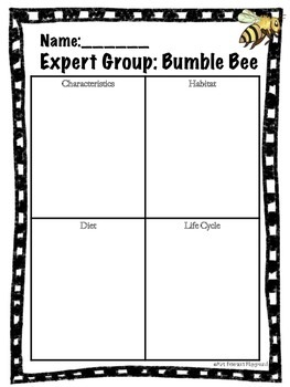Insect: Expert Groups