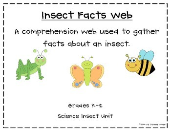 Insect Facts Comprehension Web
