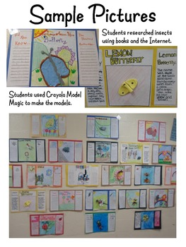 Insect Informational Report and Model ~ Research & Expository Writing