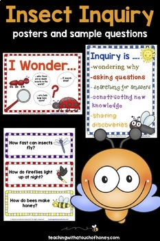 Inquiry Based Learning   Insects   Inquiry Posters & Projects   Insect Research