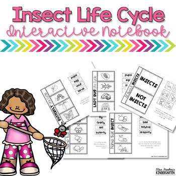 Insect Interactive Notebook Activities