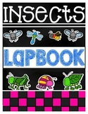 Insect Interactive Research Journal & Lap Book!