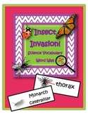 Insect Invasion!  Vocabulary Word Wall Cards