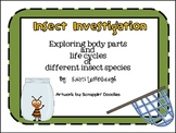 Insect Investigation - Exploring Body Parts and Life Cycles