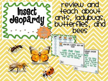 Insect Jeopardy!