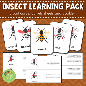 Montessori Parts of an Insect Learning Pack