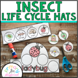 Insect Life Cycle Hats Cut and Glue