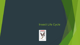 Insect Life Cycle Powerpoint/Reading A-Z Companion