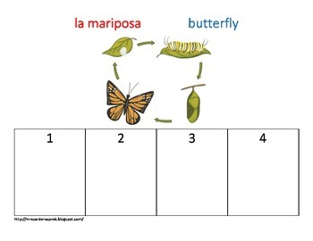 Insect Life Cycle Sequencing
