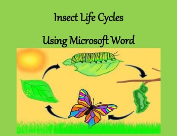 Insect Life Cycles Using Microsoft Word