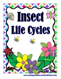 Insect Life Cylces