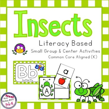 Insect Literacy Pack - Letter Recognition, Beginning Sounds and More!