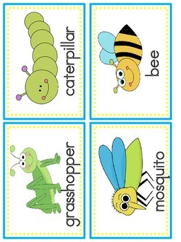 Insect Literacy and Math Activities