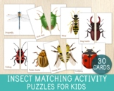 Insect Matching Activity - 26 Puzzles - Symmetry - Matching Games - Biology