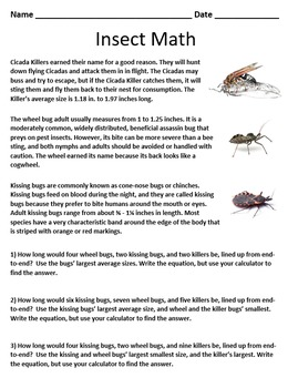 Insect Math Worksheet