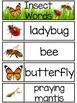 Insect Math and Literacy Centers for Preschool, Pre-K, and Kindergarten