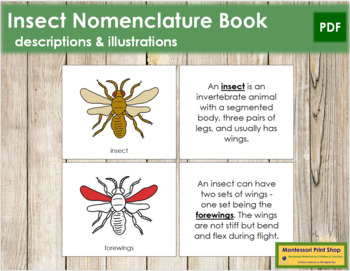 Insect Nomenclature Book (Red)