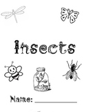 Insect Packet