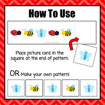 Insect Pattern Cards