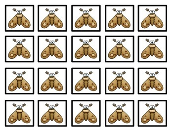 Pattern Cards: Insects