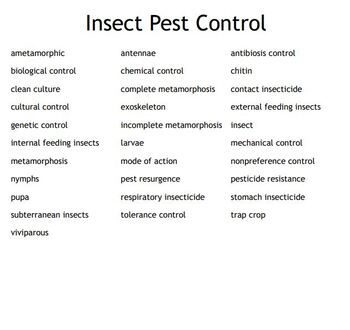 Insect Pest Control Vocabulary Bingo for an Agriculture II Plant Science Course