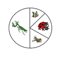 Insect Probability Math Game