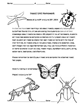 Insect Project Pack