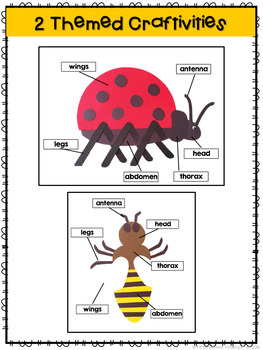 Insect: Reading Comprehension, Writing and Craftivities