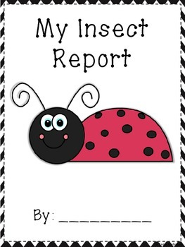 Insect Research Report and Writing