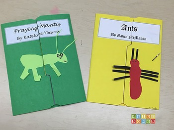 Insect Report Graphic Organizer and Lapbook