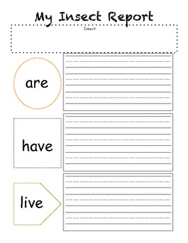 Insect Report-Graphic organizer
