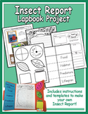 Insect Report Graphic Organizer and Lapbook - Heidi Songs