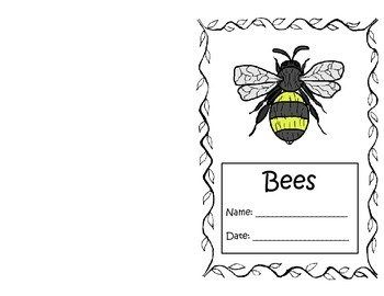 Insect Report Templates by Real Things | Teachers Pay Teachers