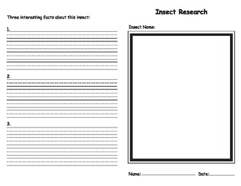 Insect Research Booklet