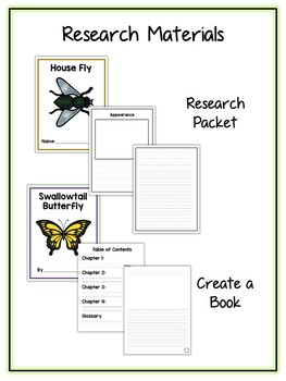Insect Research Project - 14 Types, Vocab Cards, Packet, Book  + More!