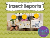 Insect Research Report {EDITABLE}