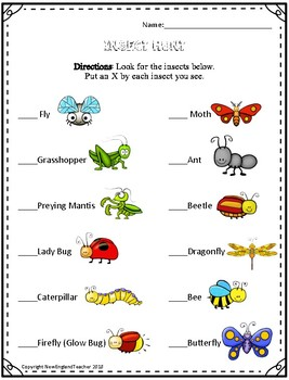 Insect Scavenger Hunt Printable Worksheet for Elementary Science Class
