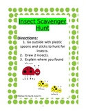 Insect Scavenger Hunt