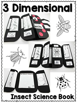 Insect Science Interactive Activities