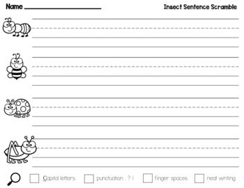 Insect Sentence Scramble for Science, Writing Center