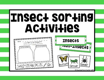 Insect Sorting Activities