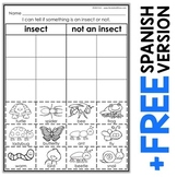 Interactive Sorting - Insect Activity