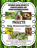 Insects - A Study, Research, and Report