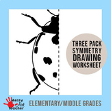 Insect Symmetry Drawing Worksheets 3 pages with a BONUS