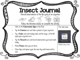 Insect Task Card