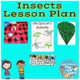Insect Lessson Plan