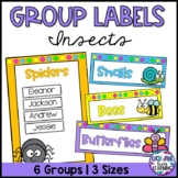 Group Labels - Insects