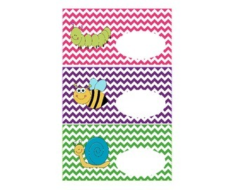Insect Theme Labels, Classroom Organization