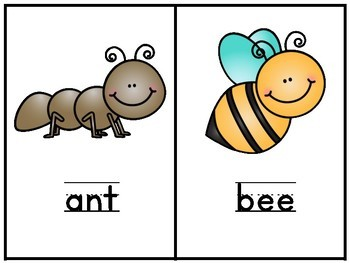 Insect Theme for Preschool